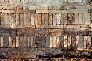 壁に竹林の七賢図、昭明太子の墓か 異例の規模に脚光