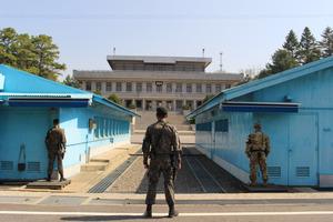 韓国、南北首脳会談の日程発表 午後には2人で松植える