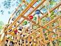 風鈴、鯛釣り、おいしい渦? 川越氷川神社で過ごす夏