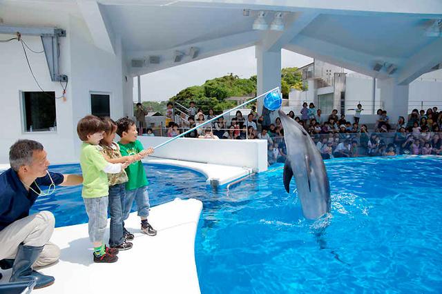 観光客が大幅に増えた九十九島パールシーリゾート(同リゾート提供)