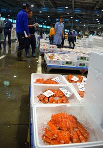 札幌市中央卸売市場には道内各地から旬の魚や青果が次々と届く=札幌市中央区