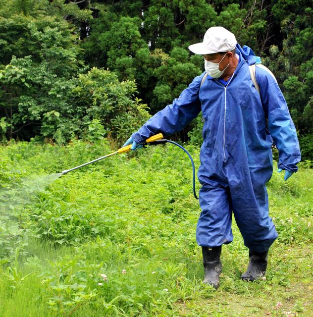 畑だった場所に除草剤をまく