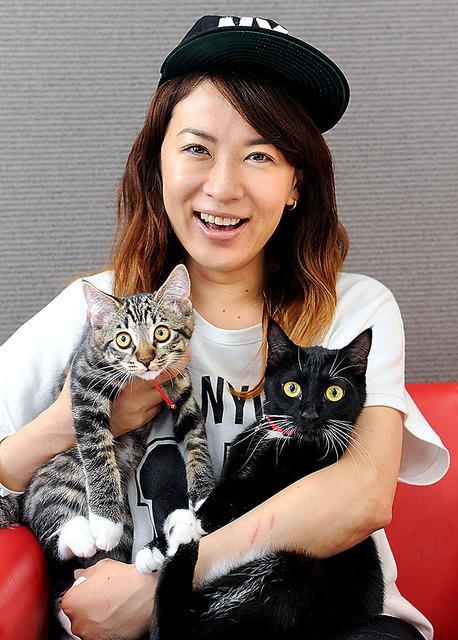 鈴木砂羽の猫
