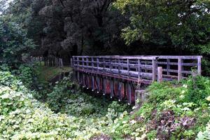 南大塚駅から延びる安比奈線にはかつての橋桁が残されたところもある=埼玉県川越市池辺
