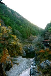 水神社のそばから見下ろした鳩ノ巣渓谷=東京都奥多摩町棚沢