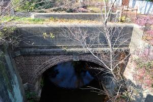 玉川上水にかかる「どんどん橋」。かつて急流がぶち当たる音から名付けられたという