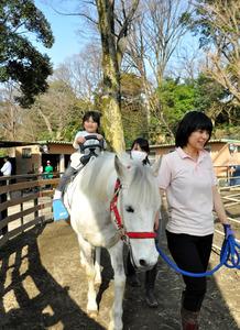 子供を背に乗せたポニーは、ゆっくりゆっくり歩いてくれる=東京都渋谷区代々木神園町