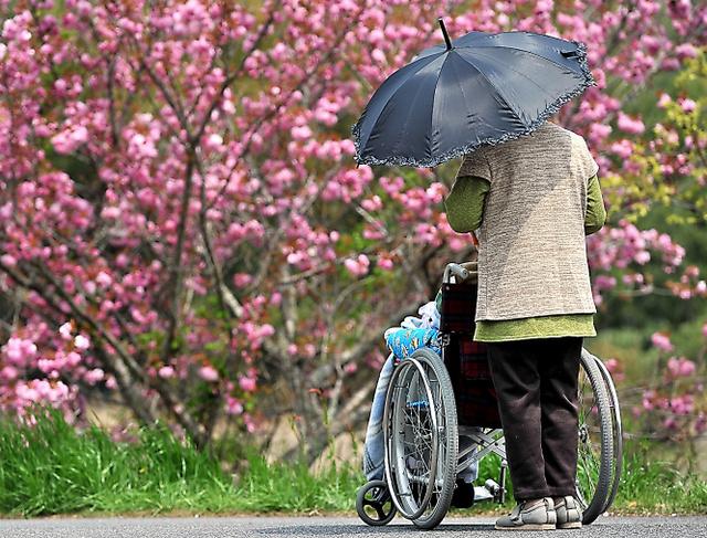 助け出された認知症の夫婦。車いすで生活する夫に妻が寄り添い、穏やかに暮らす=16日、岡山県内、仙波理撮影