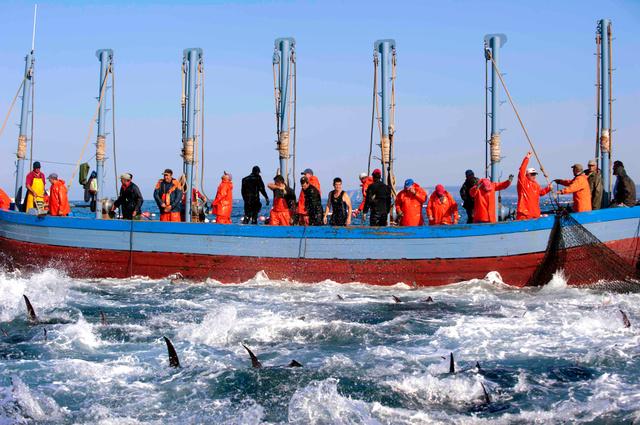 アルマドラバ漁法で漁をする漁師たち(Laura Leon/The New York Times)