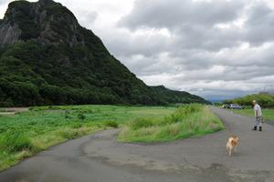 「長嶋茂雄ランニングロード」と命名された狩野川沿いの道。左の城山山頂まで続く=静岡県伊豆の国市