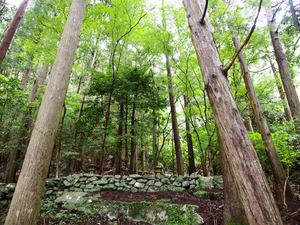 社殿がなく、森全体が神体とされている熊野古道・大辺路沿いの神社=和歌山県すさみ町
