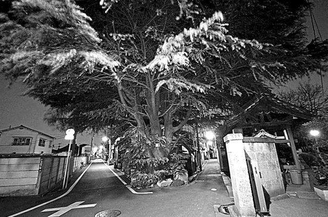 「Y字路 東京・台東区」08年、横尾忠則撮影