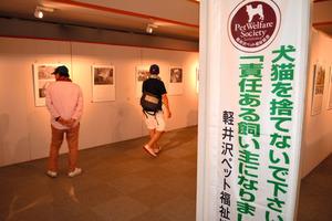 軽井沢町内で8月、ペットと里親たちの様子を伝える写真展が開かれた
