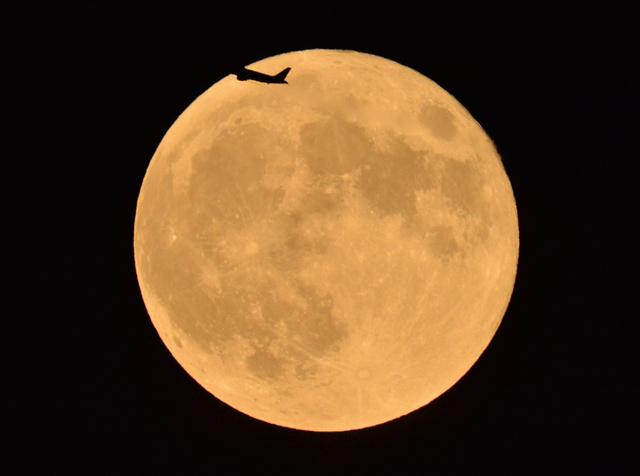 美しき満月たち