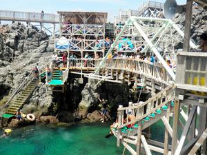 都教委が実施した神津島でのショートステイでは、都内から参加した中学生らがシュノーケリングを体験した=8月16日、都教委提供