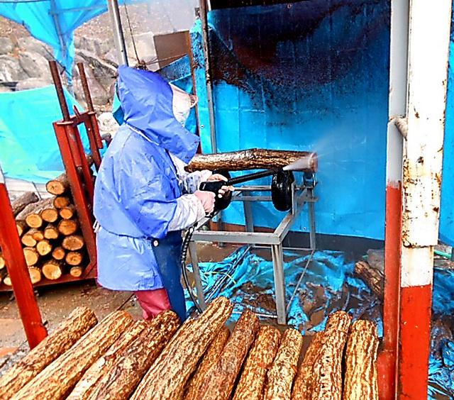 高圧洗浄機で原木除染=阿崎商店提供