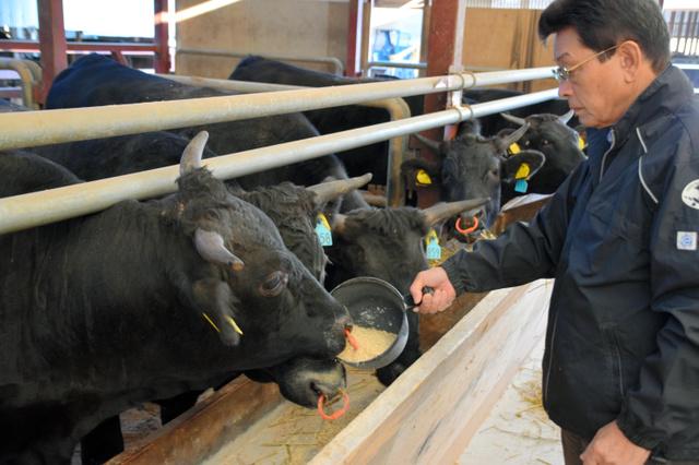 出雲大社から南へ約7キロの藤増牧場で和牛を育てる藤江昭雄さん=島根県出雲市