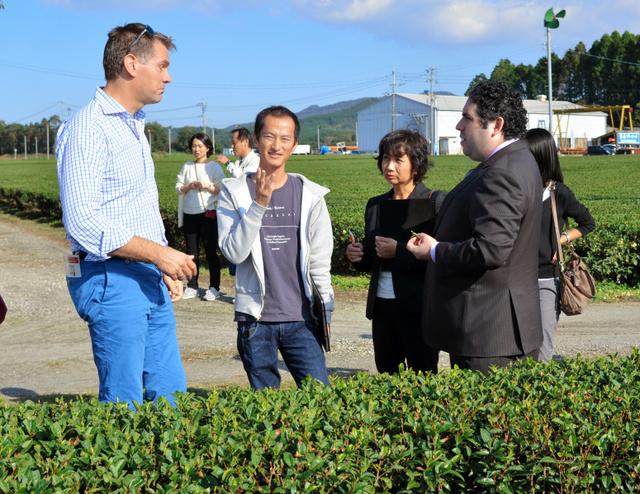 茶畑で海外のバイヤーに説明する霧島製茶の林修太郎さん(左から2番目)=鹿児島県霧島市