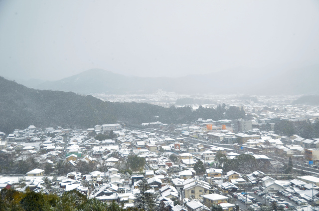 雪に覆われた山口市=寺尾佳恵撮影