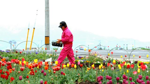 映像作品「花を手渡し明日も集う」の一場面から=小森はるかさん提供