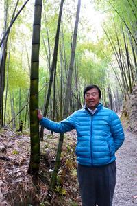 「うちの竹林のタケノコはあくがない」と話す山口勝示さん=千葉県大多喜町平沢