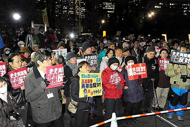 脱原発を訴える人たち=東京都千代田区の国会議事堂前