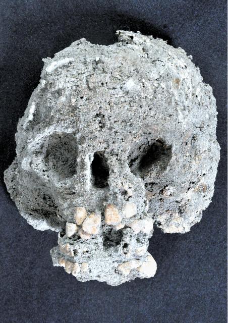 幼児の頭骨。乳歯と永久歯が生え替わる途中で、5歳前後と推定される=群馬県教育委員会提供