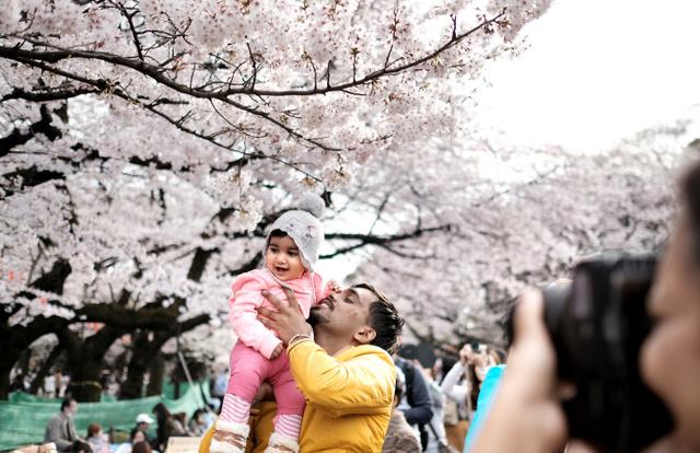 桜の前で記念撮影する親子=31日午後、上野公園、竹花徹朗撮影