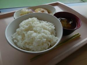 朝日新聞の社員食堂ではプラス40円でご飯が大盛りにできます。試しに注文してみたところ、丼でご飯がやってきました・・・。カロリー表を見たら、1膳で504キロカロリー(驚)。食べきれず、半分を家に持ち帰りました