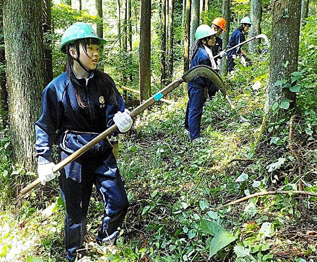 「森林体験授業」で草刈りをする中学生=檜原中提供