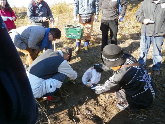 サンプル土壌を採取する講習会の参加者ら=東京都調布市