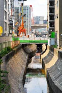 清流化計画のある渋谷川。上流では暗渠(あんきょ)の流路変更もあった=東京都渋谷区渋谷3丁目