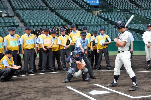講師の指導のもと、ストライクゾーンを確認する参加者たち=阪神甲子園球場