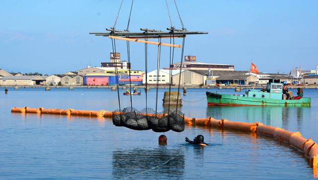 ネットに入れた石炭灰の再生材が大阪湾に沈められた。CIFERの実験だ=1月26日、大阪府岸和田市