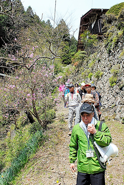 地元ガイドの話を聞きながら山里の小道を歩く参加者=埼玉県飯能市