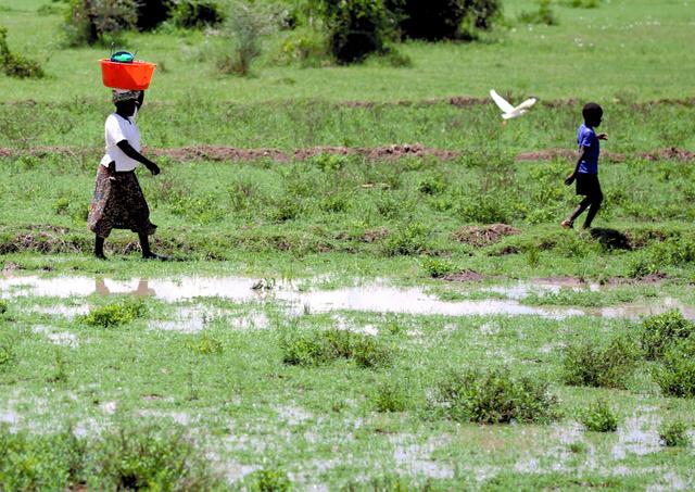 大量の蚊が飛び交う中、雨で水浸しになった集落を歩く女性と子ども=キスム郊外、三浦英之撮影