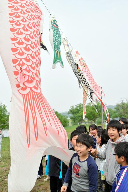 「渡利水辺の楽校」の再開を記念して、こいのぼりを掲げた市立渡利小の児童=福島市渡利