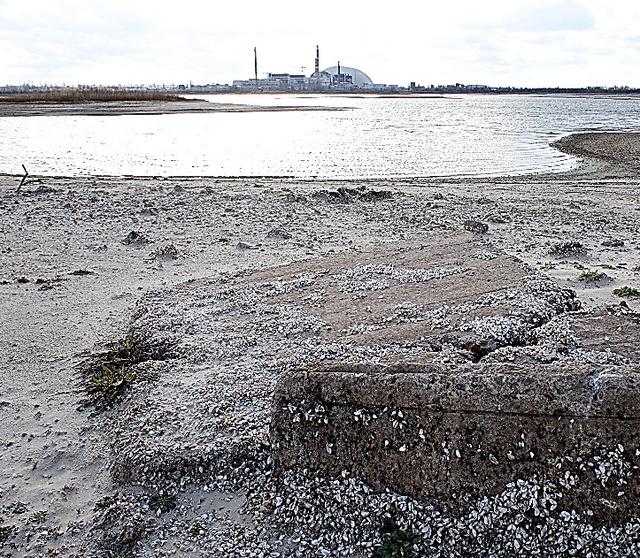 チェルノブイリ原発近くにある湖の水位は下がり、湖底だった地面がむきだしになってきている=4月2日、ウクライナ
