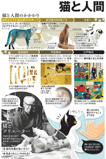 猫と人間<グラフィック・宗田真悠>