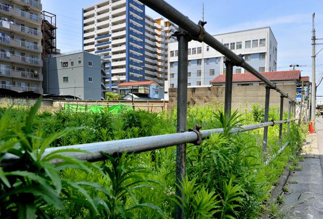 1年前に簡易宿泊所2棟が焼け、11人が死亡した現場。一帯は更地となり雑草が生い茂っていた=15日、川崎市川崎区、仙波理撮影