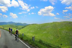 秋吉台でサイクリングを楽しむ人たち=県提供