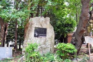 (各駅停話)狭山ケ丘駅 三ケ島に薫る大正ロマン