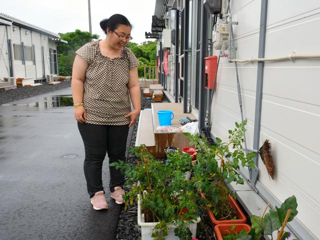 屋久島の仮設住宅で生活する日高由美さん。玄関の脇で野菜を栽培している=屋久島町宮之浦