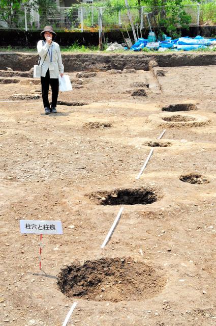 僧侶が生活していたと考えられる建物の柱穴=高知市中秦泉寺