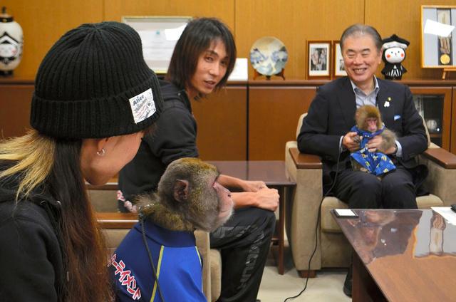 人なつこさが売りで、「くらま」は鈴木俊美市長のひざの上で、「るいーじ」はソファに手をかけて話を聞いた=栃木市役所