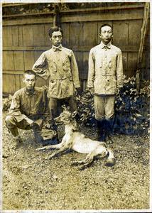 ニホンオオカミの画像 p1_26