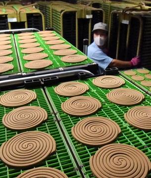 茶色の蚊取り線香、アジアからの観光客に人気 和歌山