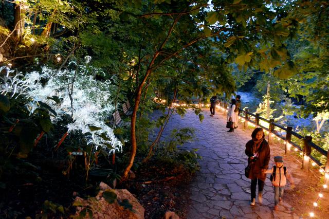 豊平川沿いの遊歩道がライトアップされ、散策を楽しめる「定山渓ネイチャールミナリエ」=札幌市南区