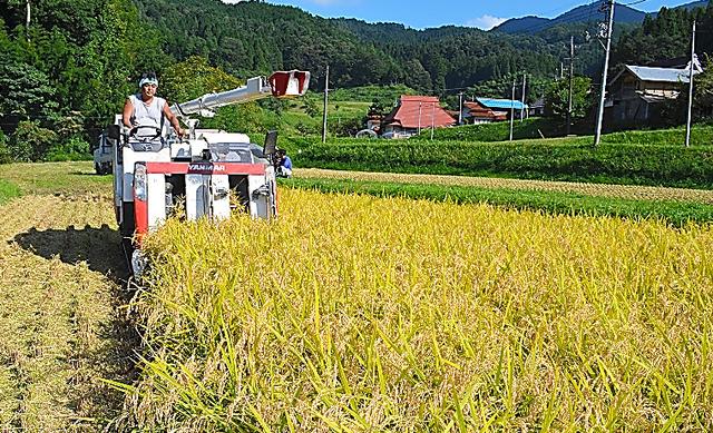 コメを収穫する農家。農家の収益向上は改革の柱だ=島根県