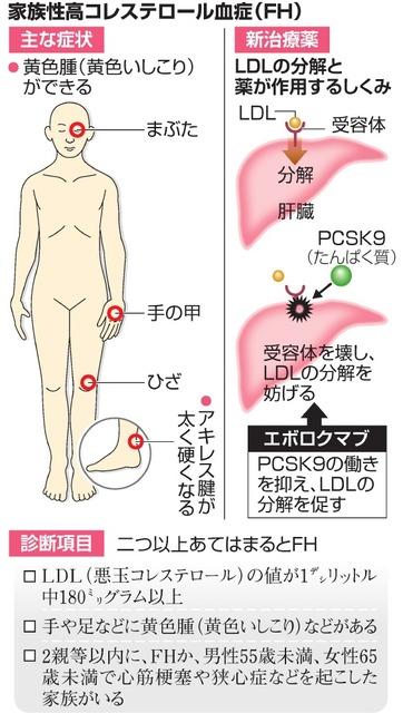 家族性高コレステロール血症(FH)